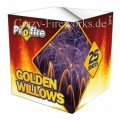 Evolution Golden Willows (XXL Batterie Feuerwerk)